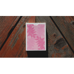 Sakura Playing Cards by Francis and Dominic Garcia wwww.jeux2cartes.fr