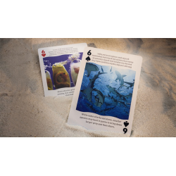 Bicycle Sharks Playing Cards by US Playing Card wwww.jeux2cartes.fr