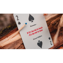 Smokey Bear Playing Cards by Art of Play wwww.jeux2cartes.fr