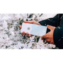 Winter NOC Glacier Ice (Bleu) Playing Cards wwww.jeux2cartes.fr